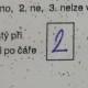 1. ano 2. ne